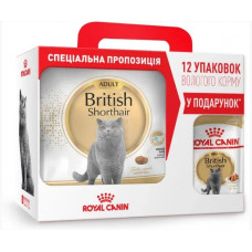 Royal Canin British shorthair 4кг + 12 паучей для кішок породи британська короткошерста1