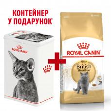 Royal Canin British shorthair 2кг - для дорослих кішок породи британська короткошерста1