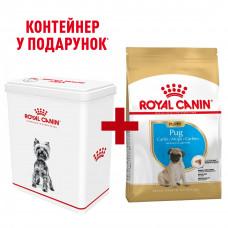 Royal Canin Pug Puppy 1,5 кг - корм для щенков мопс1