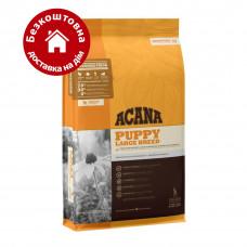 Acana Puppy Large Breed 17кг-корм для цуценят великих порід1