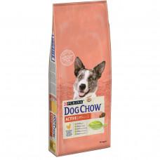 Dog Chow Active 14 кг з куркою для активних собак від 1 до 9 років1