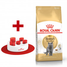 Royal Canin British shorthair 4кг для кішок породи британська короткошерста1