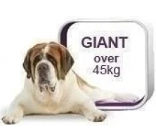Royal Canin Giant-для собак вагою більше 45 кг