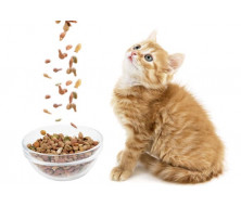 Корма на вес для кошек и котят по лучшим ценам