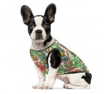 Одежда для собак 3 2