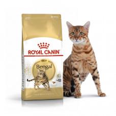 Royal Canin Bengal Adult 2кг - корм для дорослих кішок бенгальської породи1