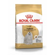 Royal Canin Maltese Adult 0,5кг- корм для собак породы мальтийская болонка1