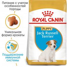 Royal Canin Jack Russell Puppy 3кг-корм для щенков породы джек-рассел-терьер1