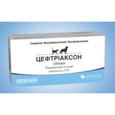 Цефтриаксон 1 флакон1