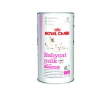 Сухое молоко для котят