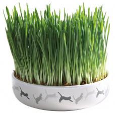 Trixie TX-42341 миска керамическая для травы и семена 50гр - лакомство для котов и кошек1