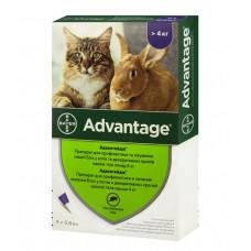 Bayer Advantage 80 капли для кошек более 4 кг (1 пипетка)1