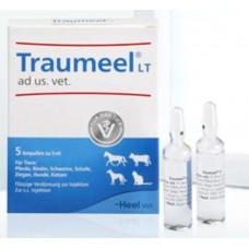 Траумель 5 мл ампула - гомеопатичний засіб (Traumeel Heel)1